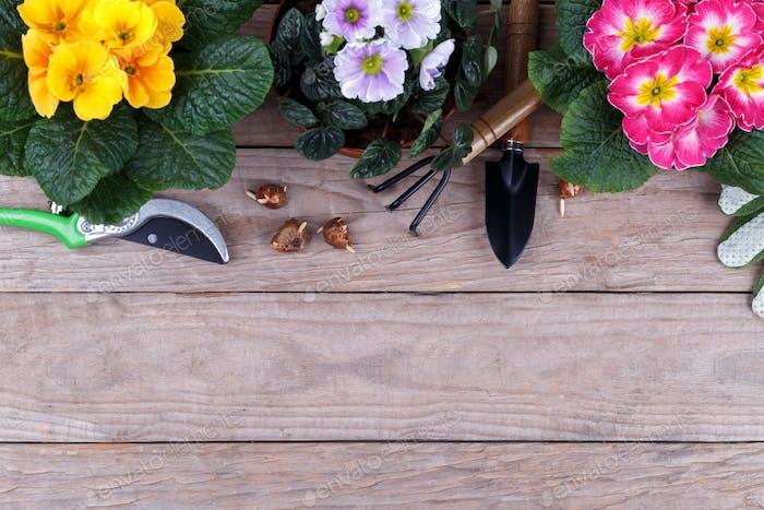 Gardening tools flat lay