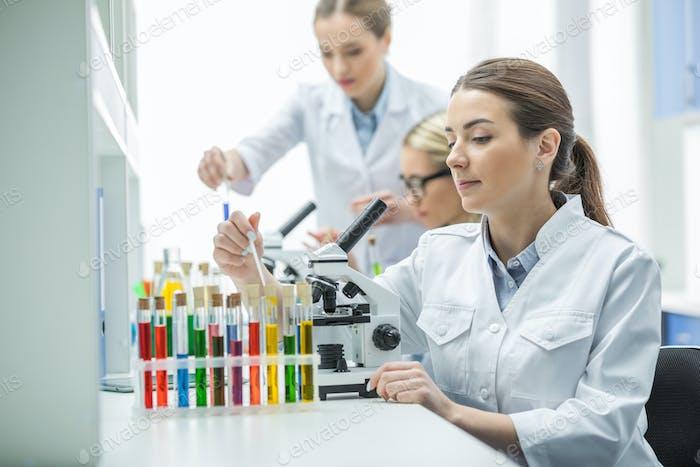 Junge konzentrierte Wissenschaftlerinnen in Labormänteln arbeiten zusammen im Labor