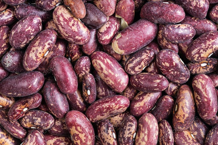 background - raw red spotted pinto beans