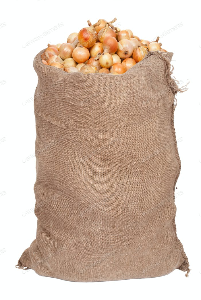 Big sack with onions