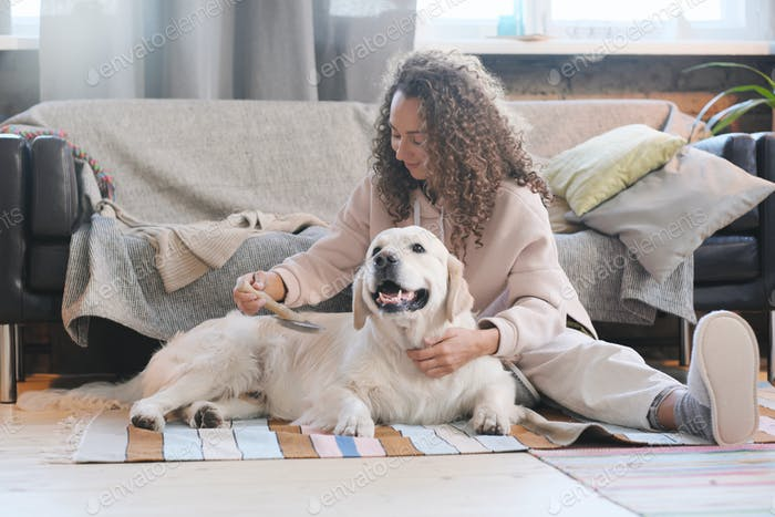Woman combing dog