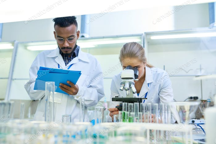 Scientists Doing Research in Lab