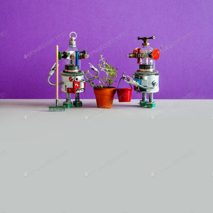 Zwei Agronom Gärtner Roboter und kultivierte landwirtschaftliche Pflanze in einem Blumentopf.