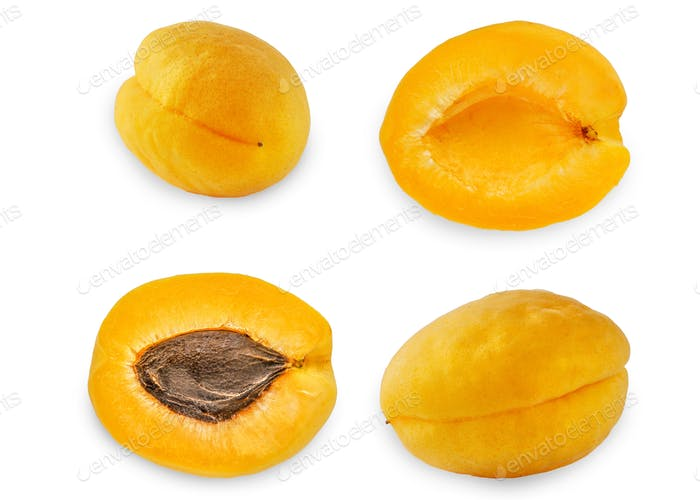 Collage of apricots on the white background