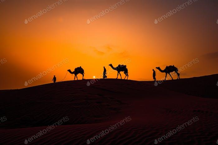 Kameleers, Kamelfahrer bei Sonnenuntergang. Thar Wüste auf Sonnenuntergang Jaisalmer, Rajasthan, Indien.
