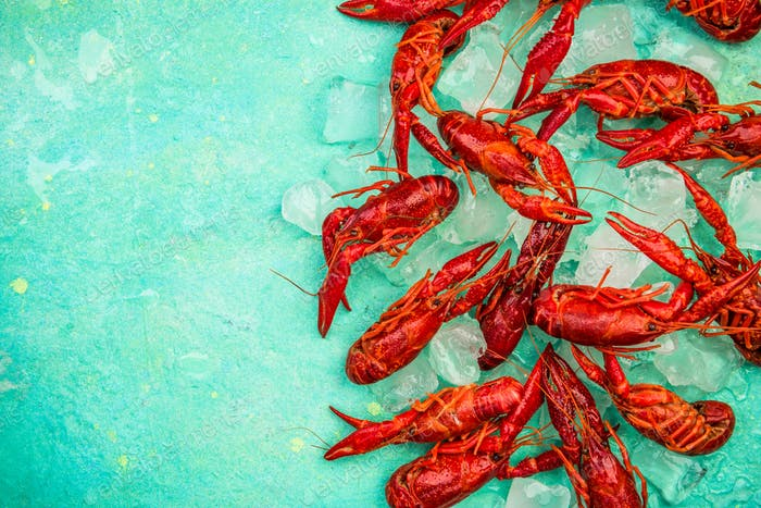 Fresh Red Crayfish over Ice, Top View, Vibrant Colors
