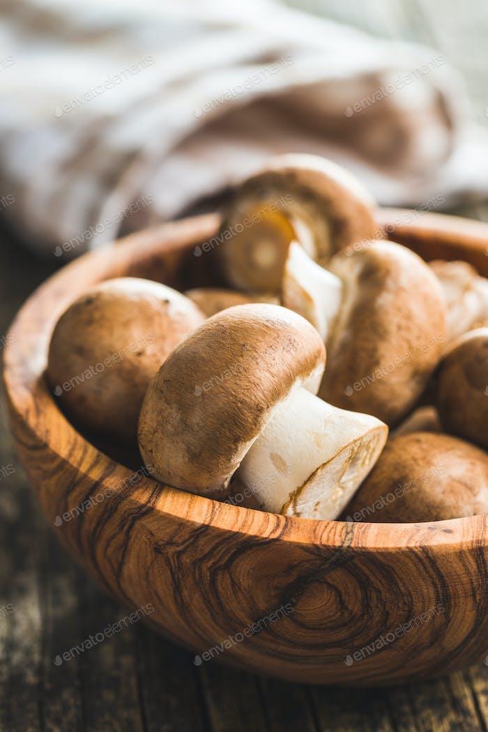 Fresh champignon mushrooms.