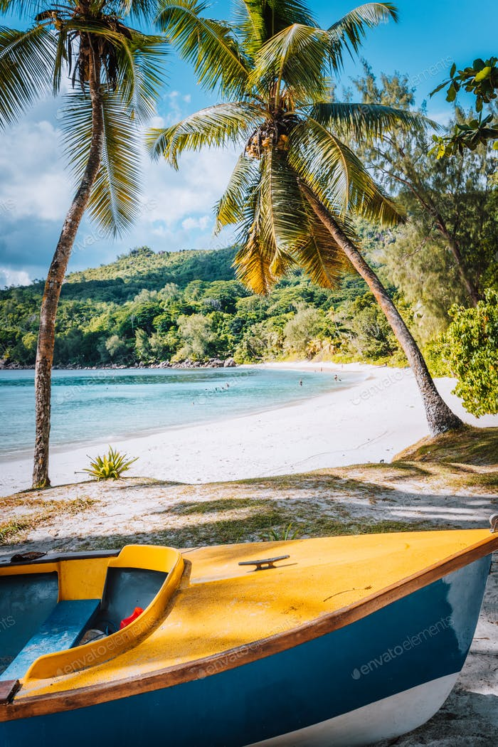Boat under palm trees on sunny day on tropical beach, Seychelles islands