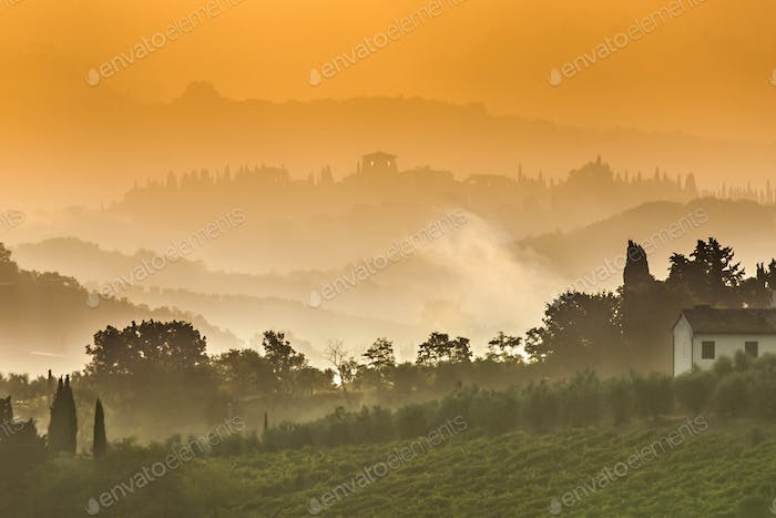 Tuscany Landscape on a Foggy Morning in July