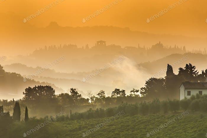 Toskana Landschaft auf einem nebligen Morgen im Juli