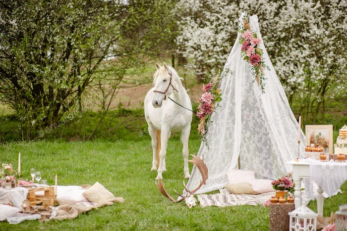 Beautiful white horse portrait and teepee