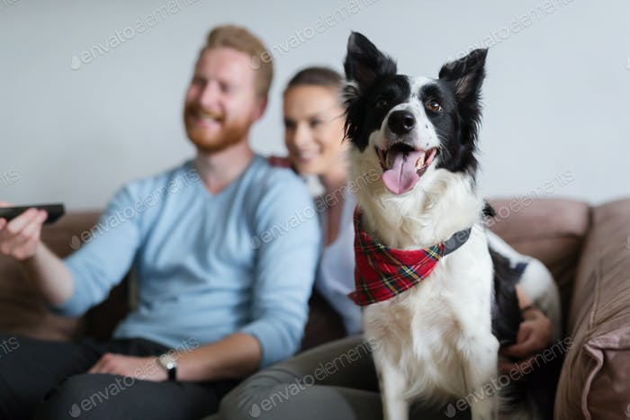 Beautiful couple watching television at home with their dog