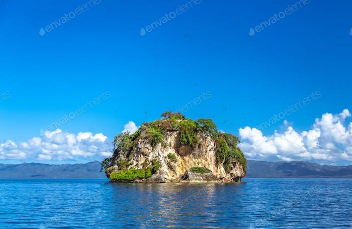 Island near the Samana shore, Dominican republic
