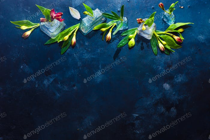 Flowers in tiny glass bottles on a dark wet background with copy space. Alstroemeria floral header