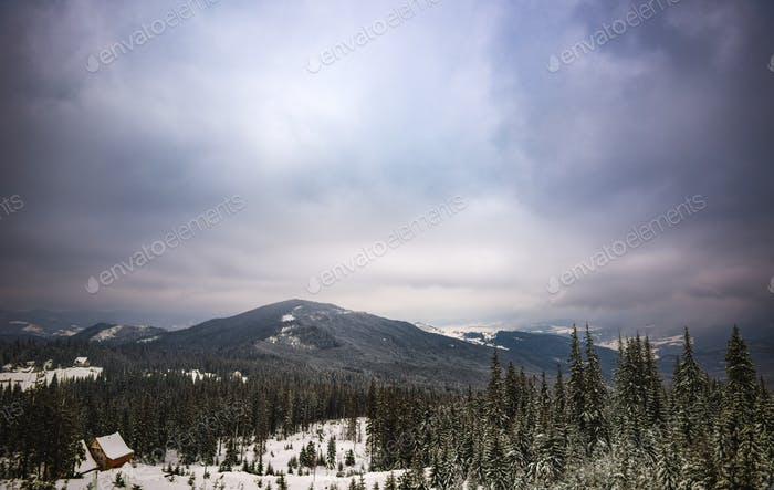 Magical landscape with fir trees and hills