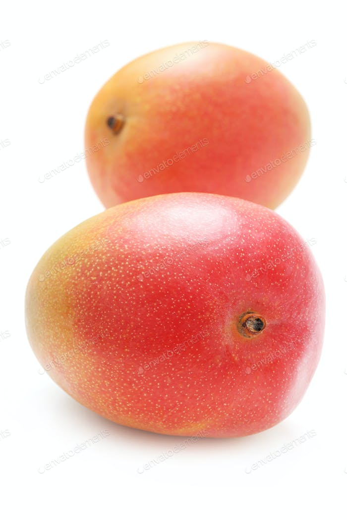 Delicious mango on the table