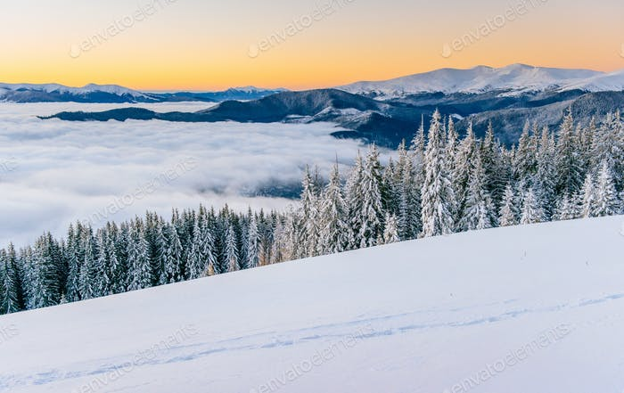 fog in winter mountains. Fantastic sunset. Carpathians. Ukraine
