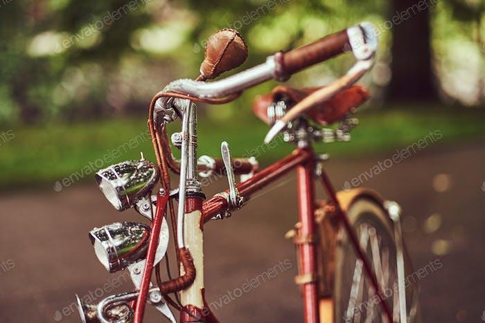 Bild eines roten Vintage-Fahrrades in einem Stadtpark.