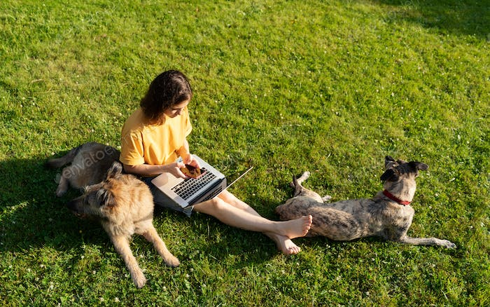 Woman sitting on the grass with smartphone laptop and dogs