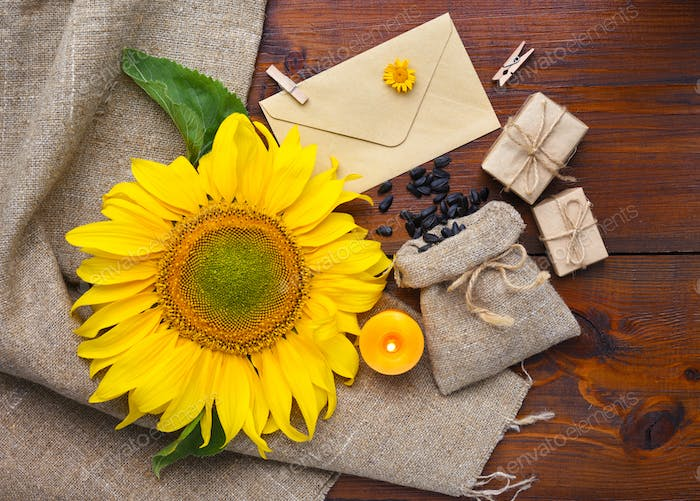 Beautiful composition with sunflower and seeds on wooden backgro