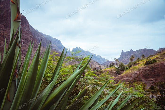 Rural landscape, arid mountains in the Coculi Valley on the island of Santo Antao in Cape Verde