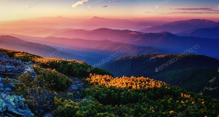 magnificent of sunrise. Carpathian. Ukraine, Europe