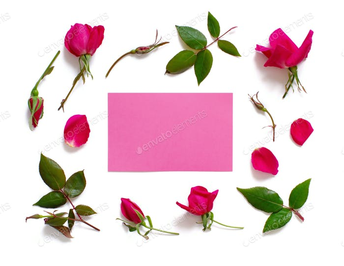 Flowers and leaves with pink paper on a white background