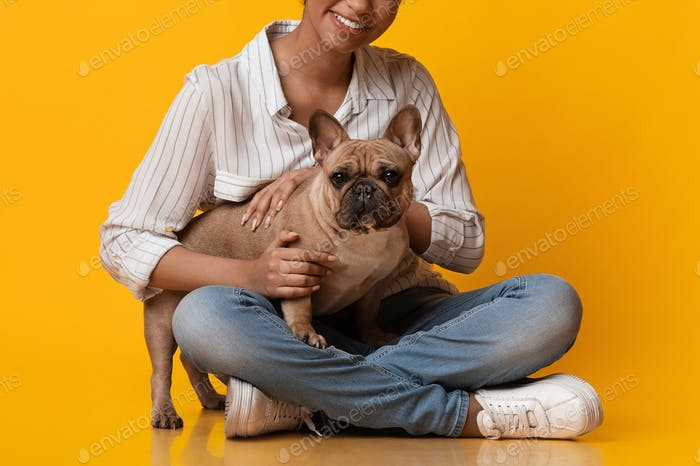 Cute French Bulldog Dog Puppy Posing With Owner, Unrecognizable Black Woman