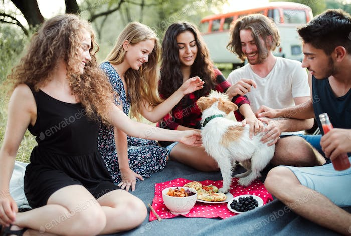 A group of young friends with a dog having picnic on a roadtrip through countryside.