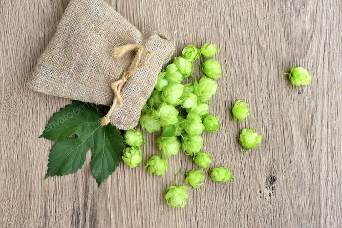 Fresh hop cones (Humulus) in bag with leaf on wooden background.