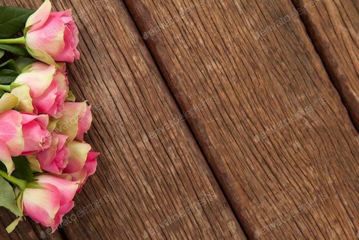 Bündel rosa Rosen