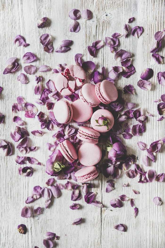 Sweet macaron cookies and rose buds and petals, vertical composition