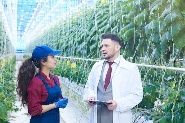 Female Worker Talking to Scientist in Modern Plantation