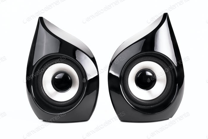 Pair of Black Speakers