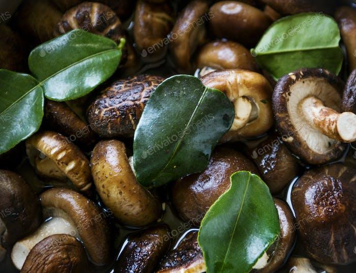 Mushroom close up food photography recipe idea