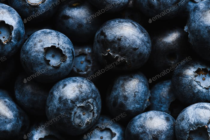 Fresh blueberry with water drops
