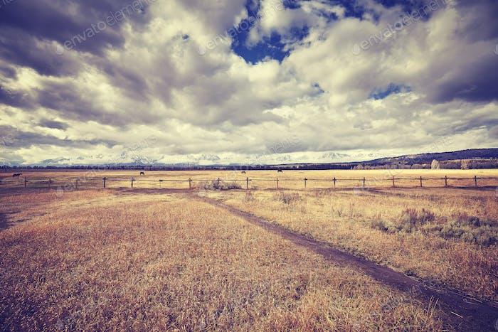 Vintage toned peaceful landscape, Wyoming, USA.