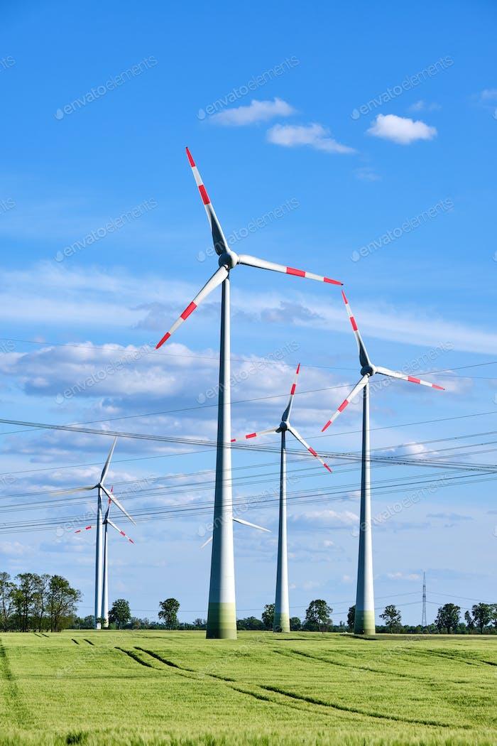 Windkraftwerke und Freileitungen