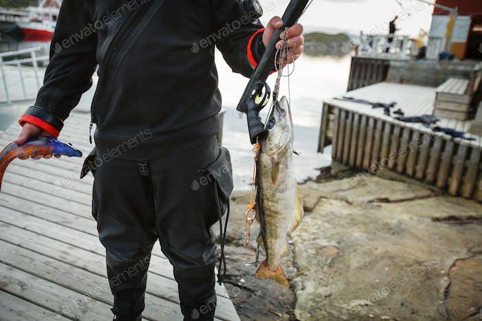 Taucher mit norwegischen Fischen