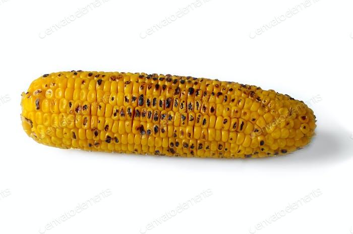 Organic roasted sweet corn on the cob on white background