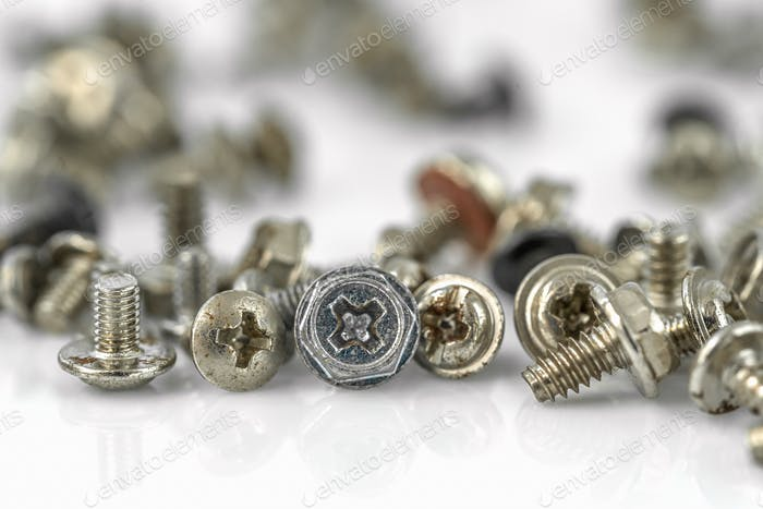 Old screws on the white background-14