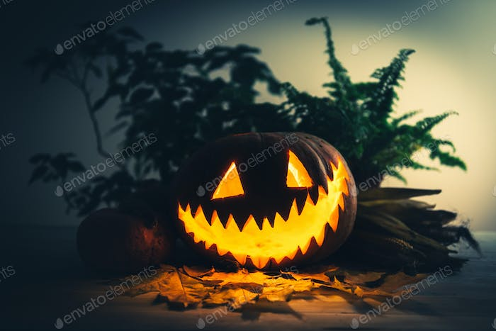 Scary traditional smiley pumpkin lantern