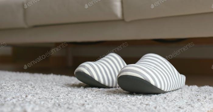 Pair of fleece slippers
