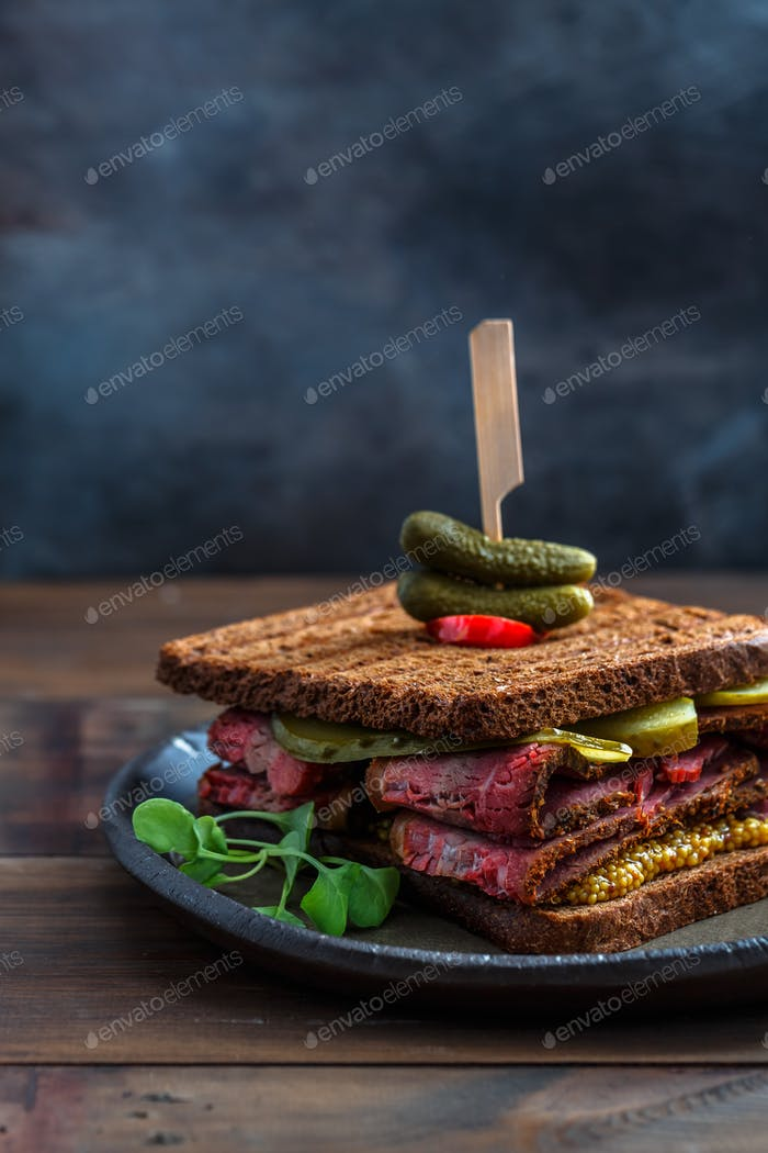 Close view of beef pastrami sandwich isolated