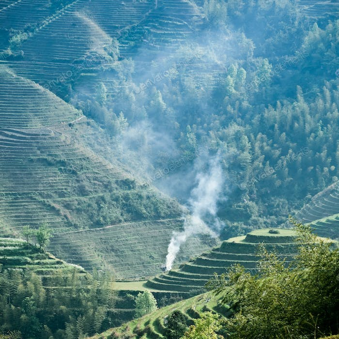 green terraced field and smoke