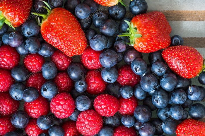 Variety of Fresh Berries such as Blueberries, Raspberries and St
