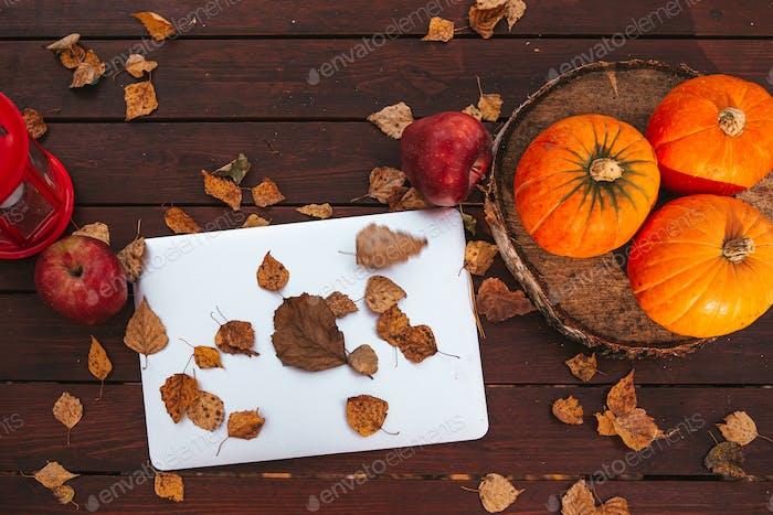 Оранжевая тыква и листья возле ноутбука компьютера на столе. Время осеннего сезона
