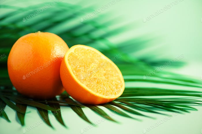 Orange fruit over tropical green palm leaves on turquoise background. Copy space. Pop art design