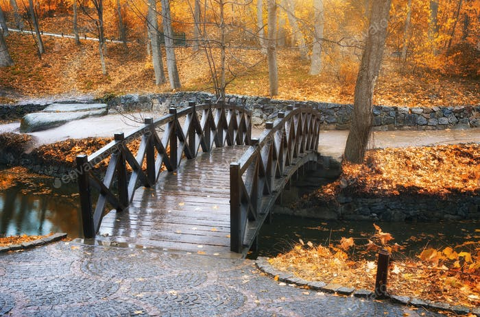 Bridge in autumn park