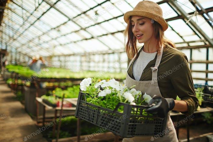 Girl with petunias